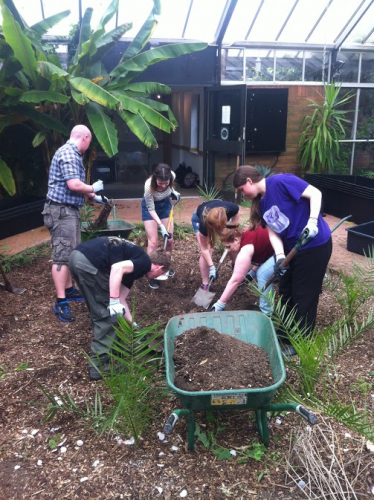 UTC students helping at Ness Gardens